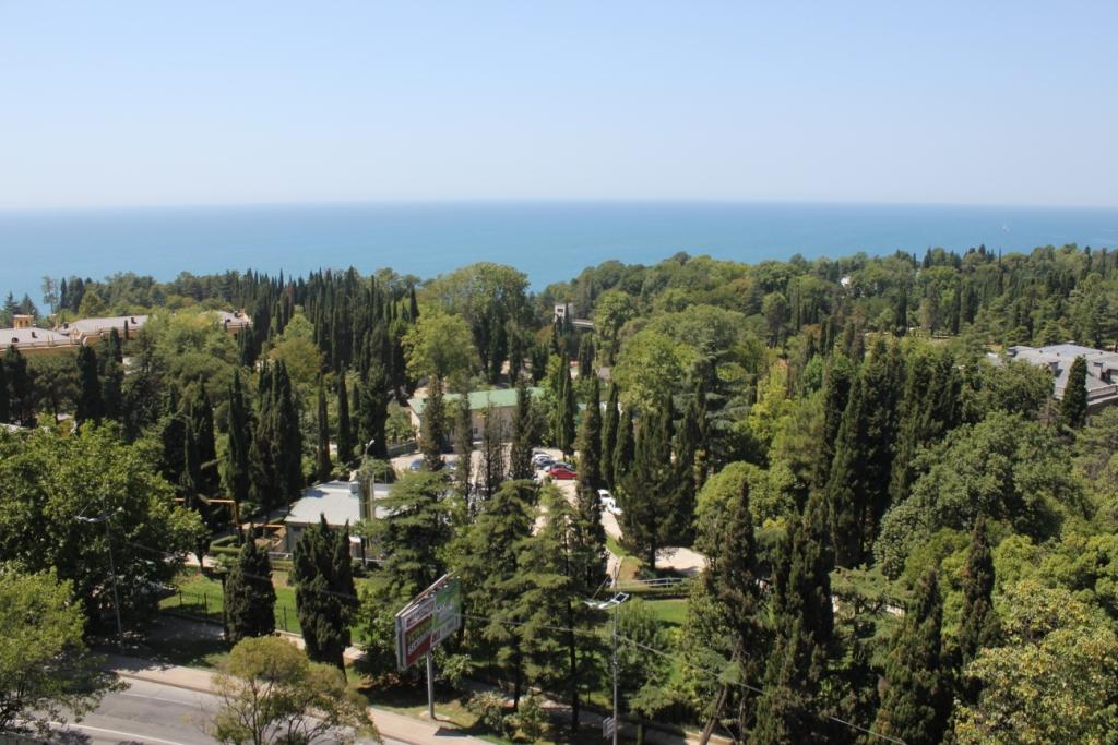Вид из окон на нац парк