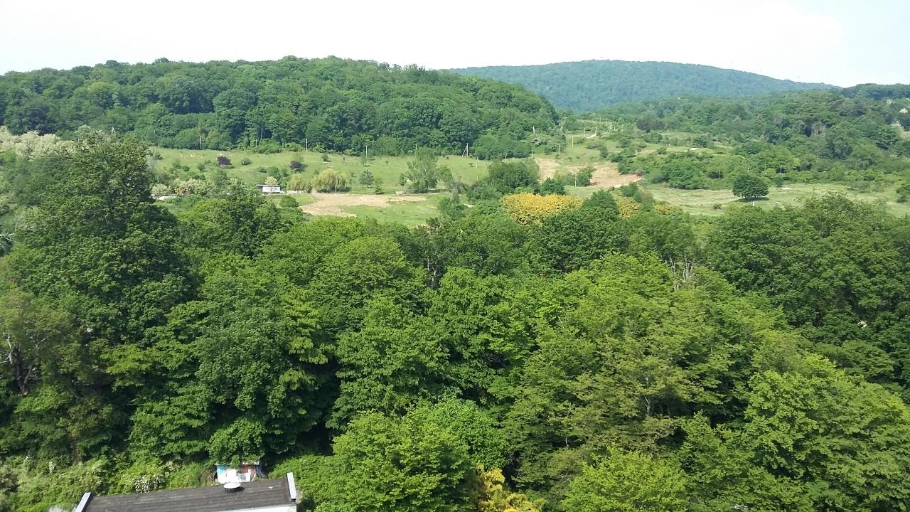 Вид на зеленые горы