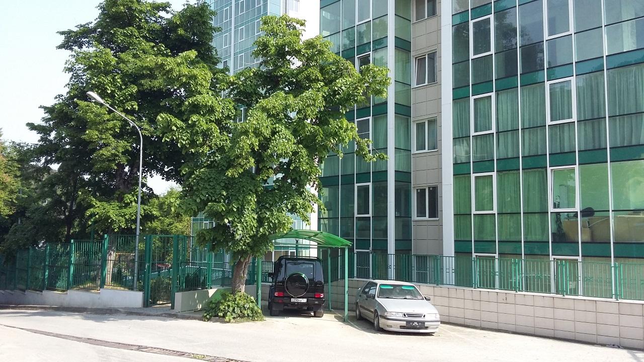 Озеленение комплекса