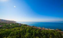Панорамный вид на море и дендрарий