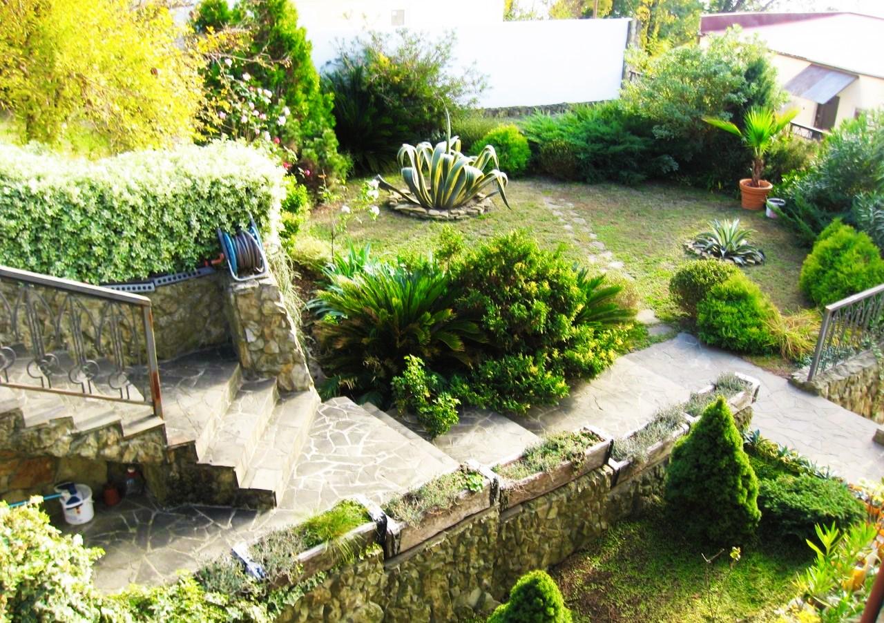 Двор с растениями