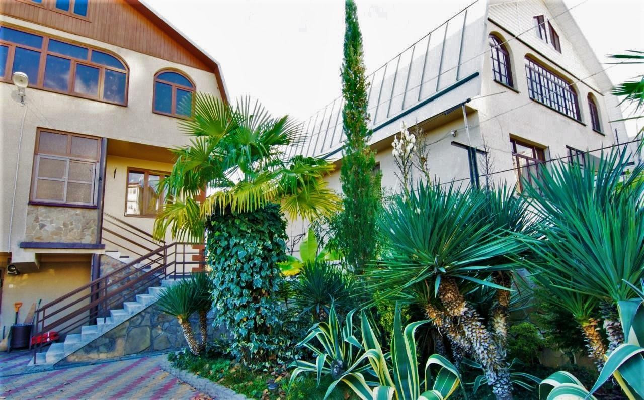 У дома пальмы