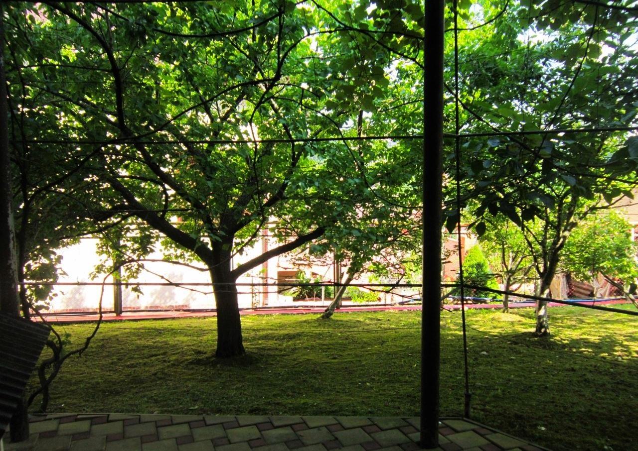 На участке плодовые деревья